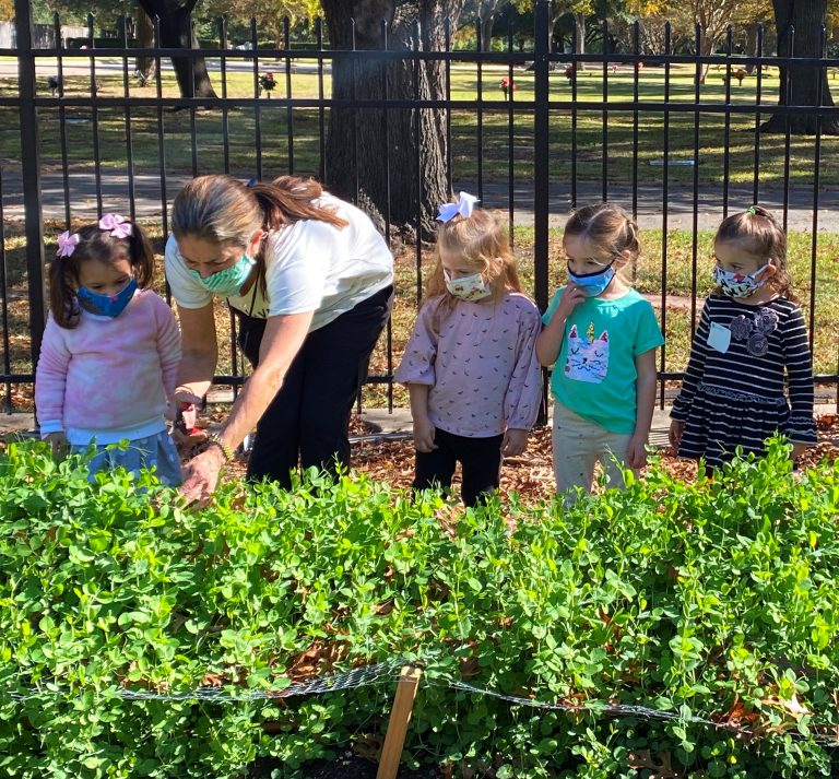 Emanu-El's gardeners provide for community
