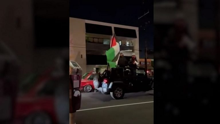 Pro-Palestinians assault Jewish diners in LA